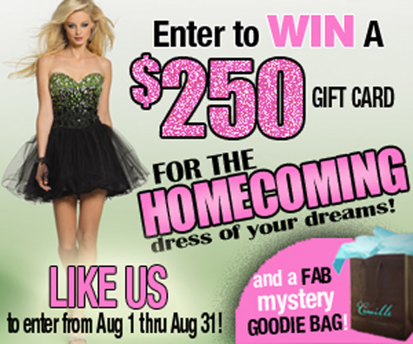 Enter to Win a $250 Gift Card and MYSTERY FAB GOODIE BAG!